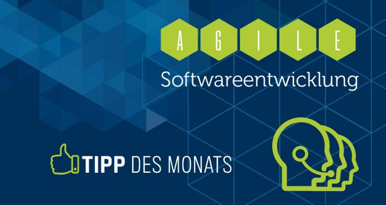 Agile Softwareentwicklung   Produktentwicklung   DIVIS-Tipp